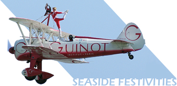 Southend Festival Of The Air 2009 Title Image